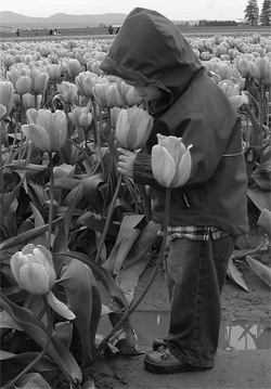 child looking a tulip